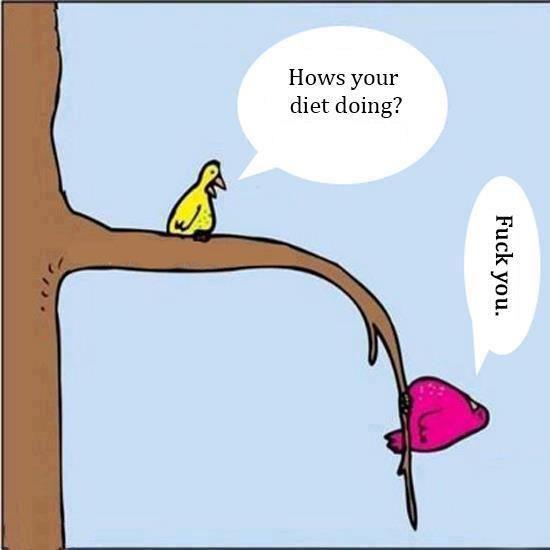 Pourquoi les régimes alimentaires ne peuvent pas marcher !