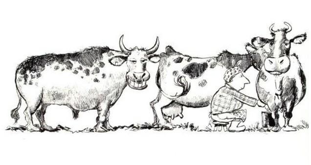Vous avez trois vaches...une fois !
