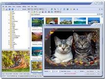 FastStone Image Viewer : Le complément indispensable de votre APN !