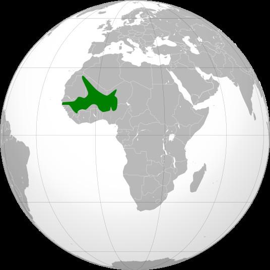 Quand l'exemple nous vient de l'Afrique