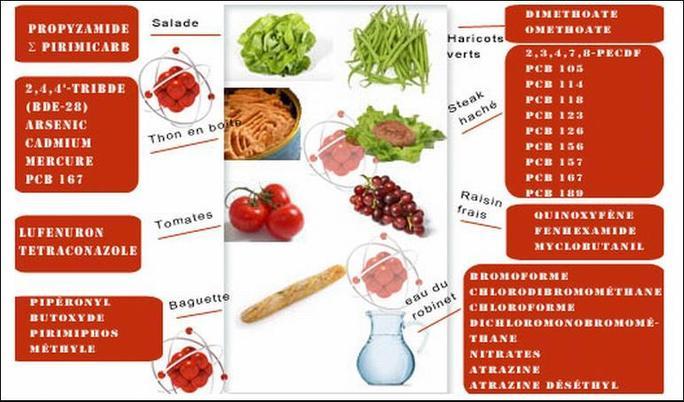 Une association alerte sur les substances chimiques contenues dans les repas des enfants