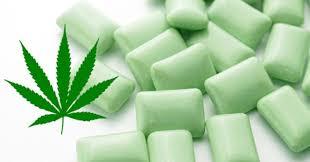 Un chewing-gum au cannabis pour soulager les douleurs de la fibromyalgie !