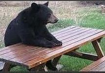 La patience est un plat qui se mange froid...