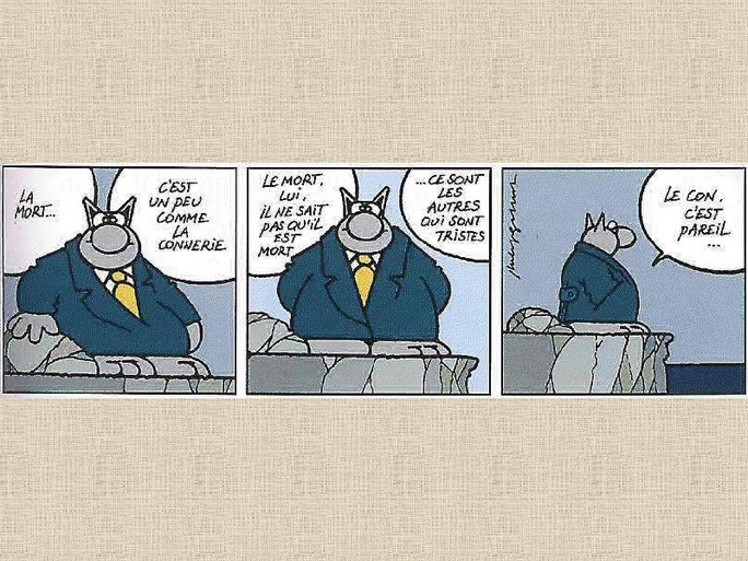 Les réflexions du Chat de Geluck