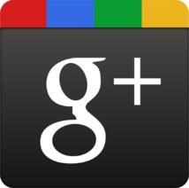 Google Plus : manuel en français