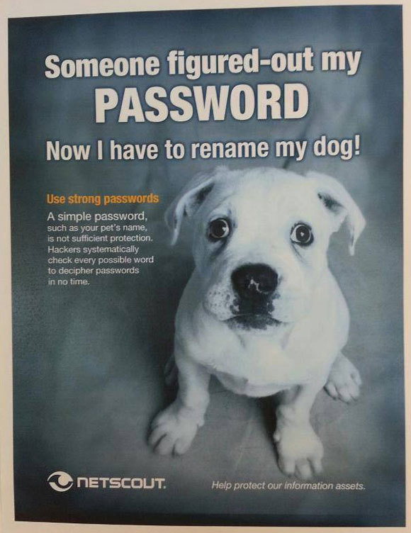 On a trouvé mon mot de passe, faut que trouve un autre nom pour mon chien !