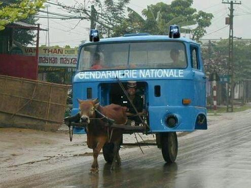 Police montée, à Tanger