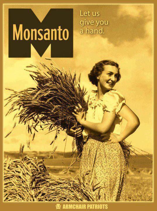 L'Europe autorise la vente de 19 OGM !