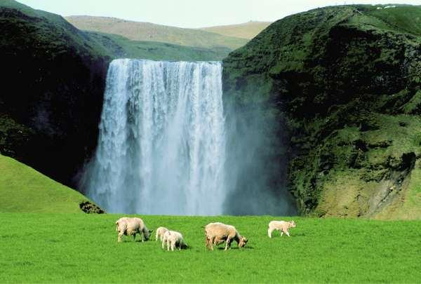 Islande : la preuve qu'une alternative est possible !
