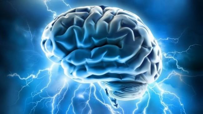 Le cerveau humain aurait une capacité de stockage phénoménale