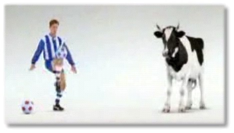 Vache de foot !