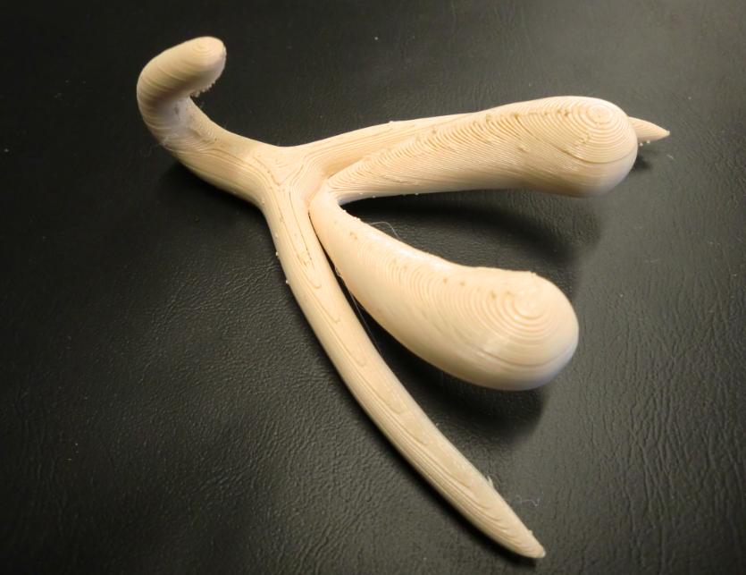 Le (vrai) clitoris, réalisé sur une imprimante 3D
