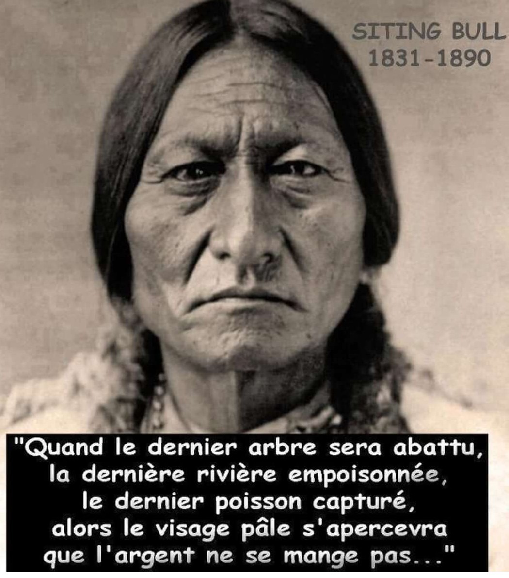 Sitting Bull avait tout prévu, y compris la fin prévisible de notre monde