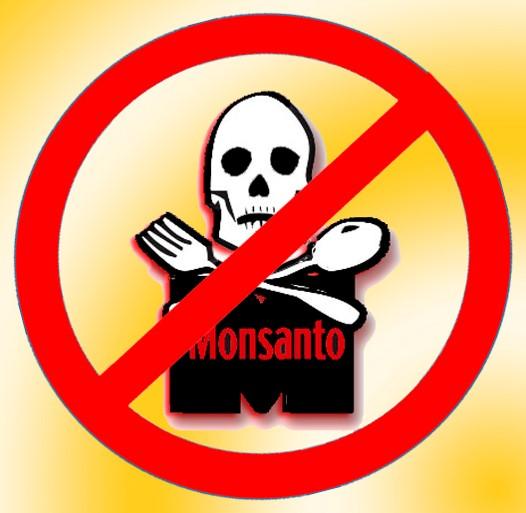 Glyphosate : un vaste plagiat de Monsanto dénoncé