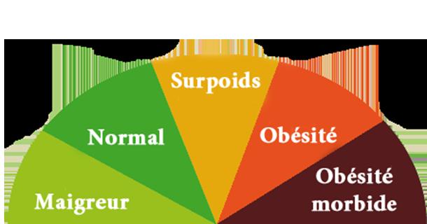 L'Indice de Masse Corporelle se calcule en divisant le poids (en kg) par le carré de la taille (mètre).