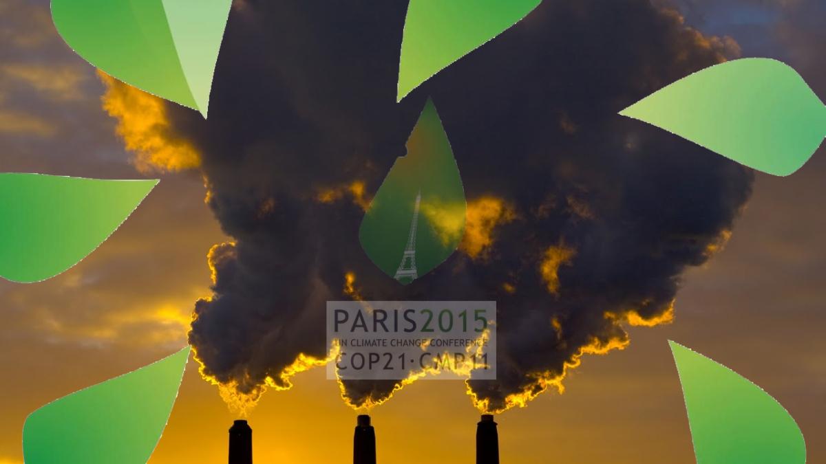 Thomas Piketty : les pollueurs du monde doivent payer