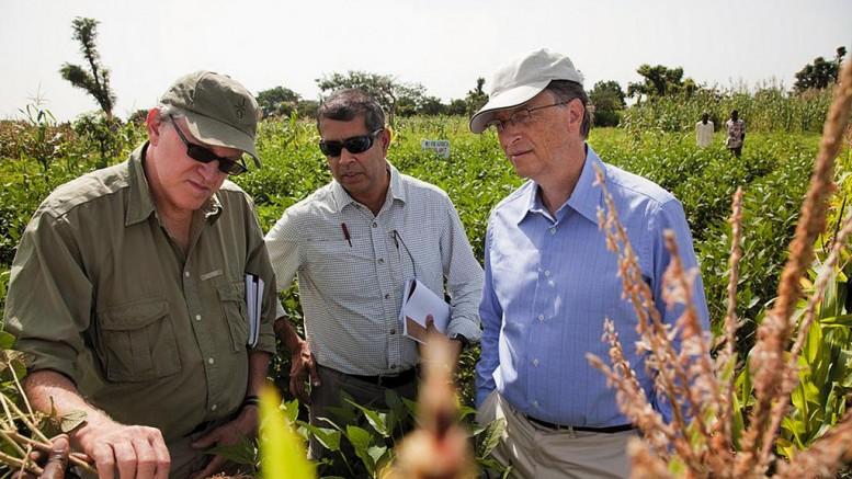 La fondation Gates, fer de lance du pillage néolibéral de l'agriculture africaine