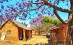 Mes photos 2018 de Madagascar