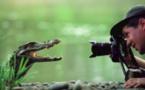 Les photographes animaliers et leurs belles rencontres