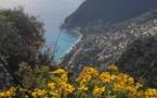 Le webmaster est en vacances : mise à jour du 3 janvier avec toutes mes photos de voyage.