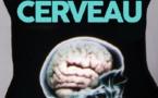 Le ventre : notre deuxième cerveau