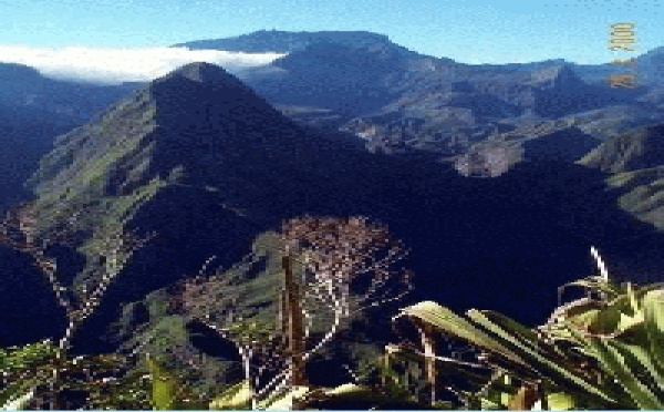 Des photos de la Réunion