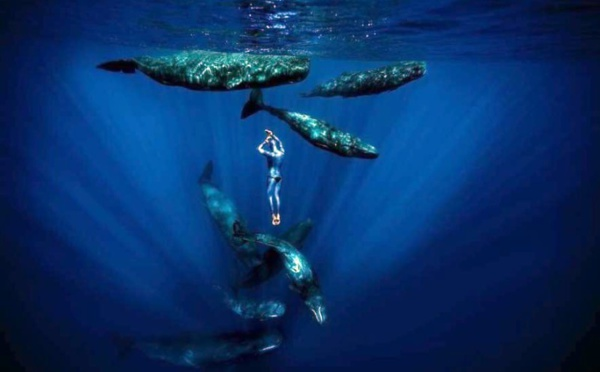 One breath around the world