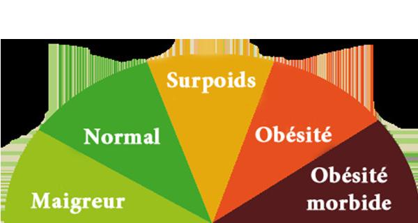 L'obésité tue trois fois plus que la malnutrition dans le monde